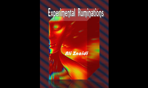 Cover of Experimental Ruminations by Ali Znaidi