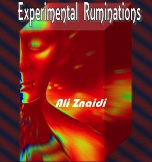 Ali-Znaidis-Experimental-Ruminations-2