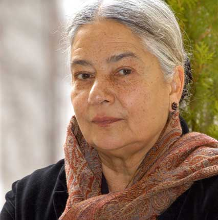 anita desai R k dhawan (editor) the fiction of anita desai new delhi: bahri publications 1989 164pp kunj bala goel language and theme in anita desai's fiction.