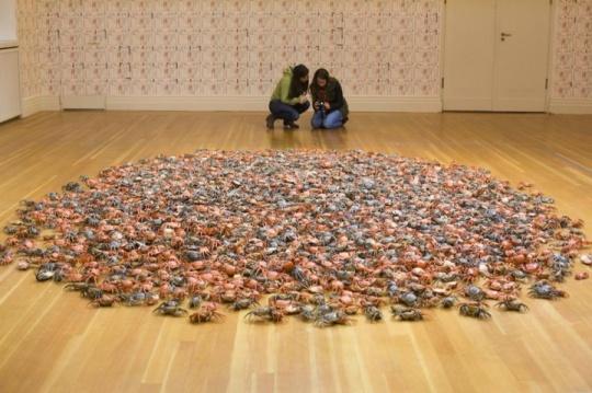 Ai Weiwei He Xie