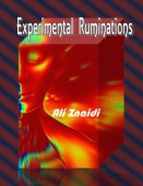 poetry month Ali-Znaidis-Experimental-Ruminations-231×300-131×170